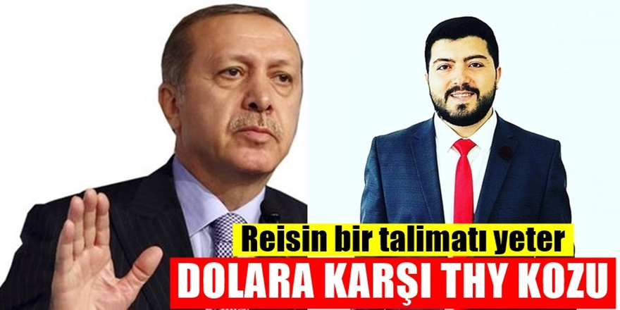 Dolar Savaşında Türkiye'yi uçuracak öneri