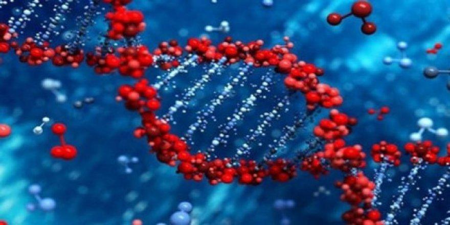 DSÖ'den herkesi üzen Koronavirüs Açıklaması - Beklenti boşa çıktı
