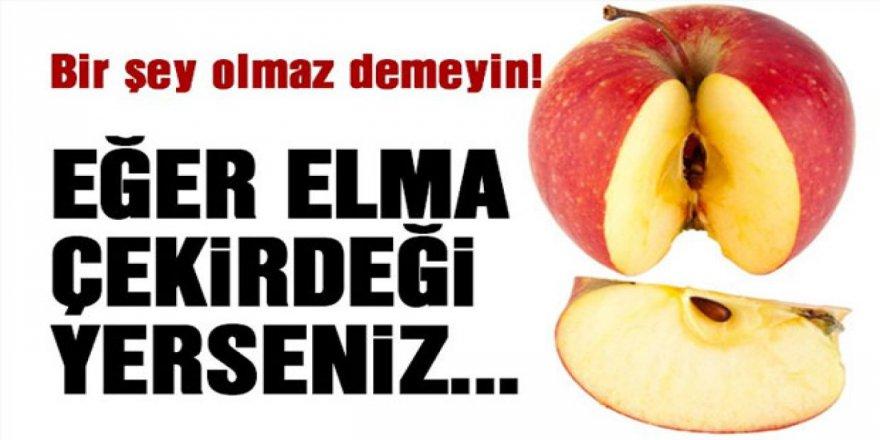 Elmayı Yerken Dikkatli Olun Çekirdeğini Yediğinizde Bakın neye yol açıyormuş!