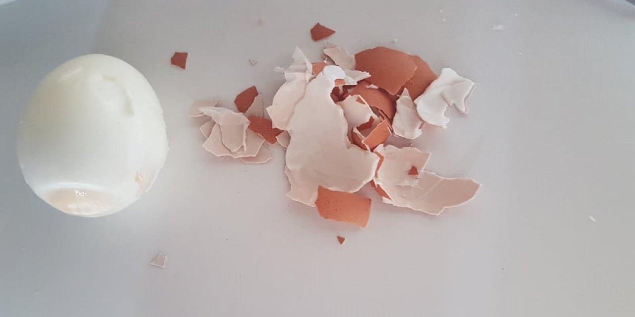 Yumurta kabuğunu çöpe atmayın bakın ne işe yarıyor